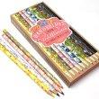 画像1: CHRONICLE BOOKS クロニクルブックス Katie Daisy 色鉛筆 10色セット 【標準小売価格:2,500円】 (1)