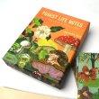 画像1: CHRONICLE BOOKS クロニクルブックス ナタリーレテ グリーティングカード 20枚セット / フォレストライフ 【標準小売価格:2,500円】 (1)